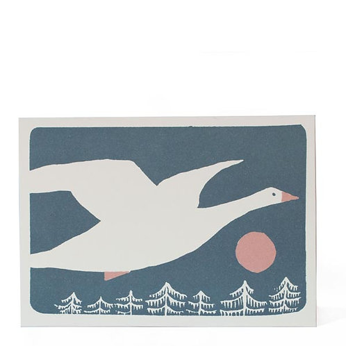 Snow Goose - 10 Pack