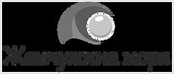 Жемчужина лого.png