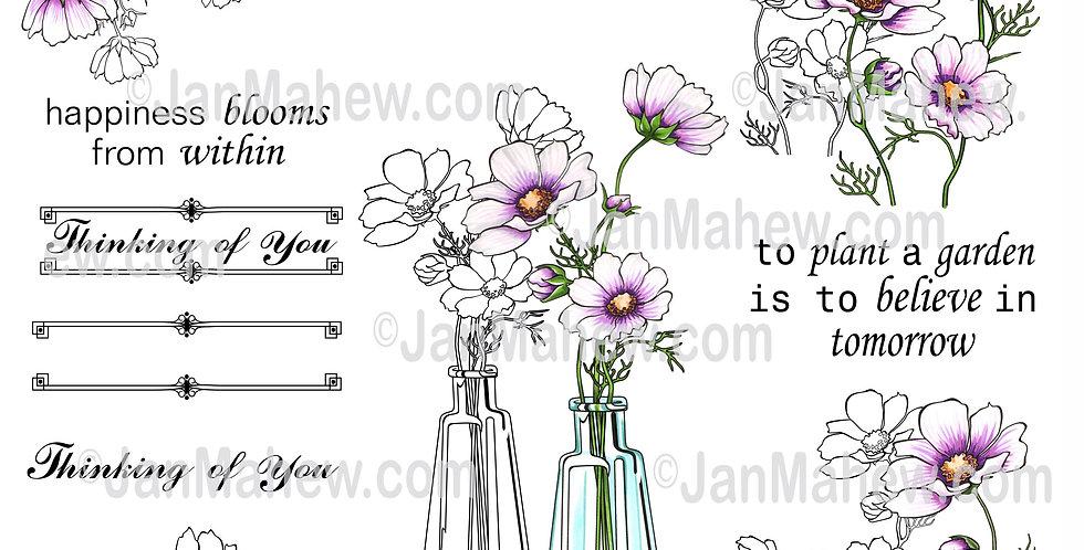 Wild Flower Blossoms