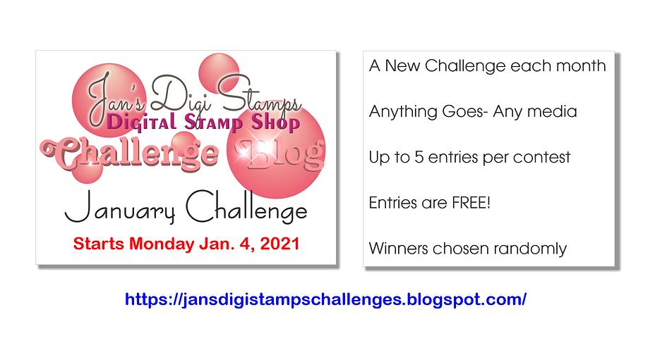 JDS Challenge Blog Landing Page Ad Janua