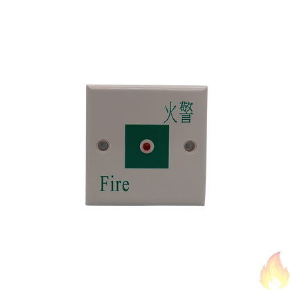 Auto-Source / 燈仔片 正方 (綠色)