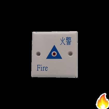 Auto-Source / 燈仔片 三角 (藍色)