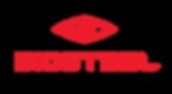 BioSteel logo.png