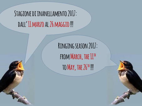 Stagione 2017! SAVE THE DATE!