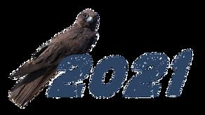 Pubblicate le date per il 2021! 2021 dates are out!
