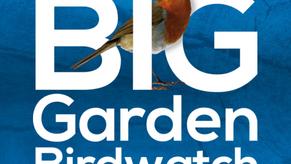 Cercasi aiuto di birdwathcers! Birdwatchers' help needed!