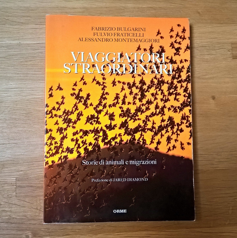 Bulgarini F., Fraticelli F., Montemaggiori A., 2016. VIAGGIATORI STRAORDINARI - Storie di animali e migrazioni. ORME Ed.