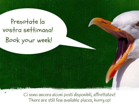 Volontari, vi spettiamo! Book your week for volunteering!