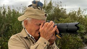 Questo weekend partecipa alla conservazione dell'avifauna! Help conservation by counting birds t