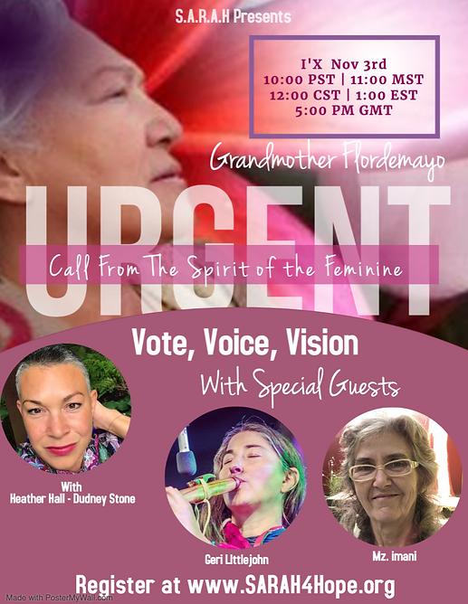 Vote, Voice, Vision.png