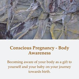 Conscious Pregnancy - Body Awareness - Tile - DEF.jpg