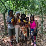 cocoa farm 6.jpg