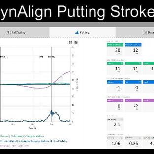 DynAlign Hackmotion Stroke Motion