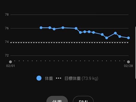 ケトジェニックダイエット2週間の体重増減グラフ。