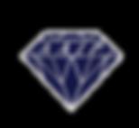 AAIP30 Logo.png