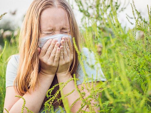 El cambio climático ha aumentado las alergias