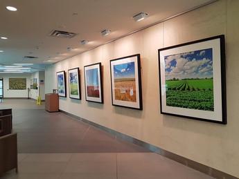 寒冬健走於醫院的「自然」畫廊