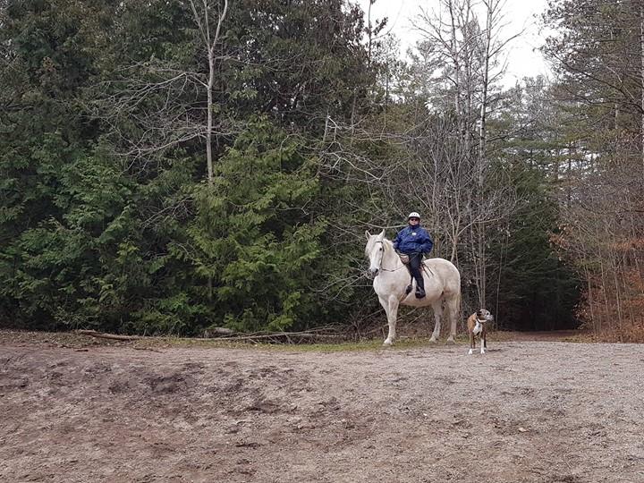 穿載一如「Patrol 巡警」的 Liz _和愛駒及愛犬天天在林間「巡行」