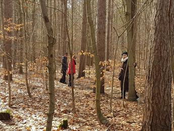 初雪後「餞(健)行」於深林