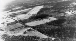 Airstrip in Undeveloped NE Tacoma