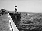 3rd Dash Point dock and diving tower - 1917