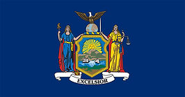 flag-New-York-color-uniforms-facings-Ame