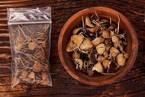 cook-magic-mushrooms.jpg