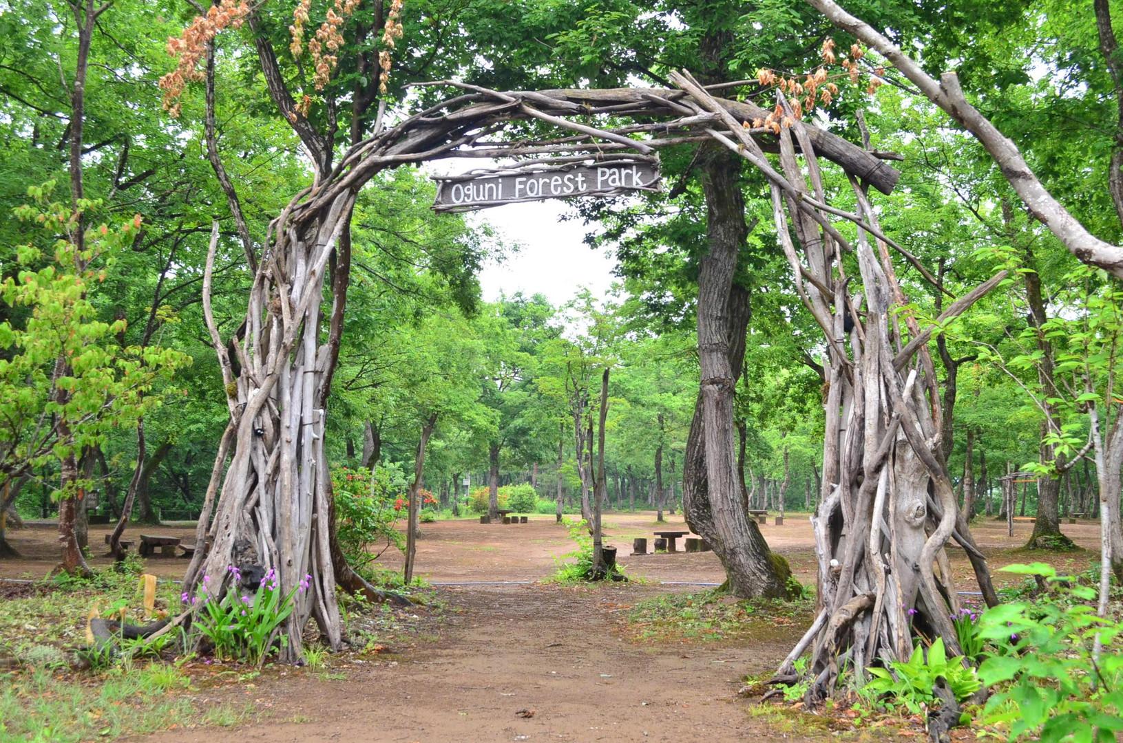 流木で組まれたウェルカムアーチ