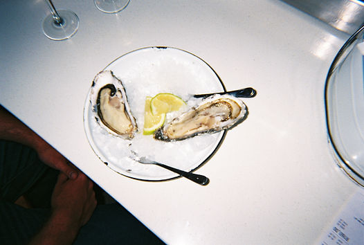 oyster©juliestrasser