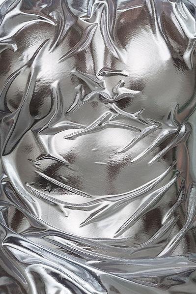 silverweb©juliestrasser.jpg