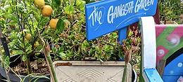 The Gangsta Gardener