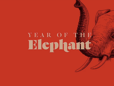 WildAid launches 'Year of the Elephant' campaign on Chinese New Year
