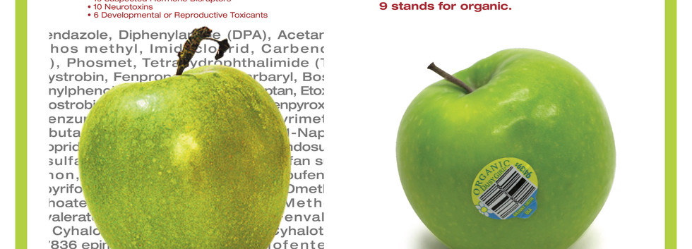 Conventional to Conscious Apple