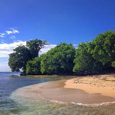 Unnamed Tropical Islands, Jamaica
