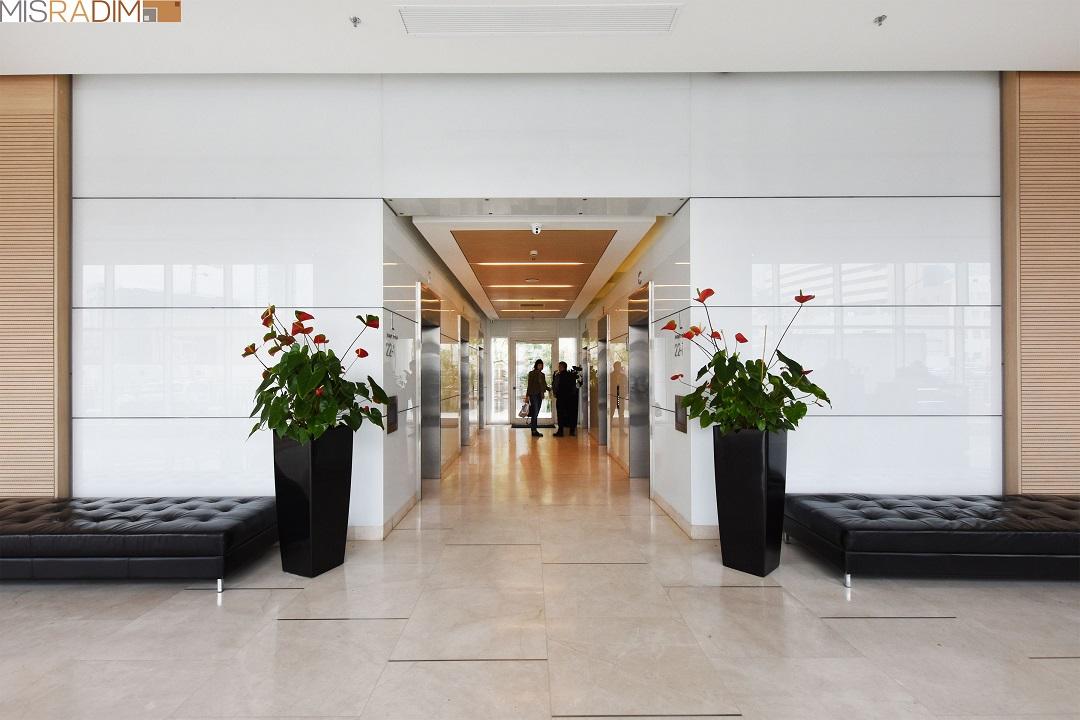 משרדים להשכרה באלקטרה
