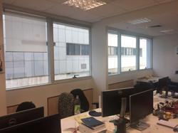 חלונות בכל חדרי העבודה