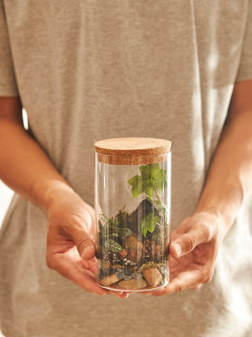 Bộ Kit DIY Terrarium - Trụ Kín