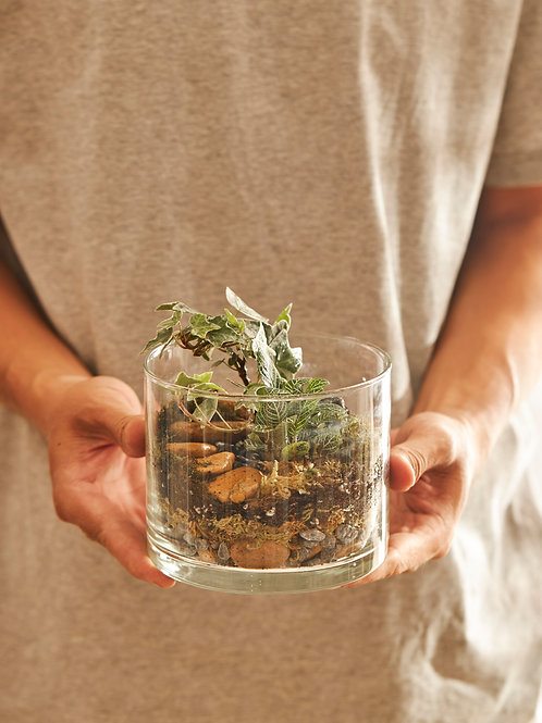 Bộ Kit DIY Terrarium - Trụ hở