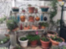 2019 garden9.JPG