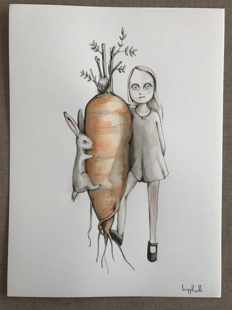 zanahoria - Carrot