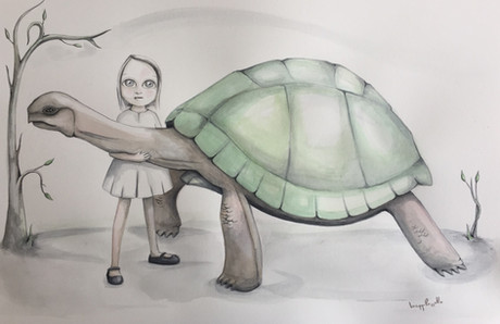 tortuga - tortoise