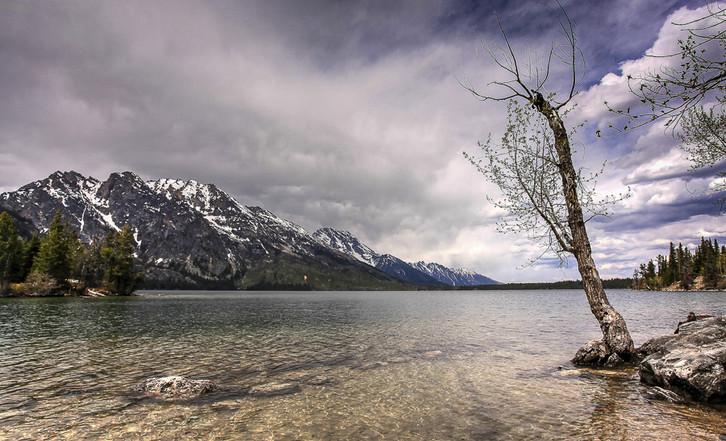 Lake tree and mountain