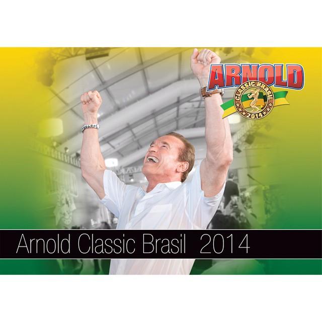 Capa do Book Anual Arnold