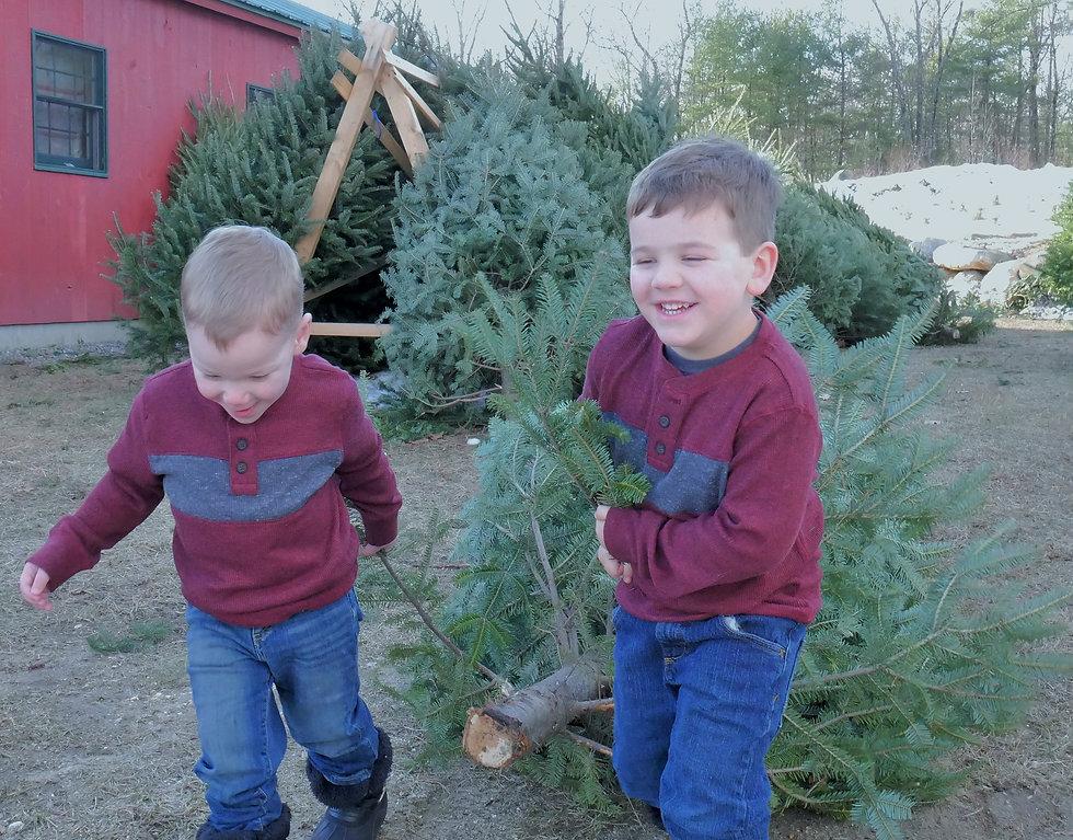 Kids Tree 7 (2).JPG
