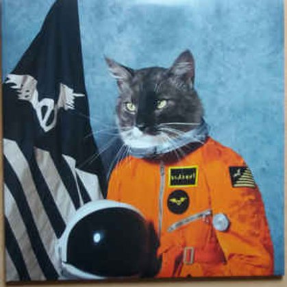 Klaxons 'Surfing the Void' RSD