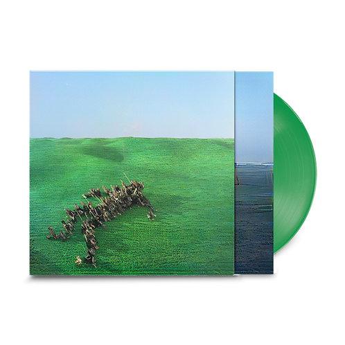 Squid 'Bright Green Field' (Warp)