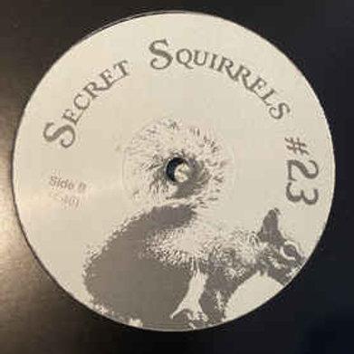 Secret Squirrels #23