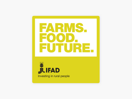 Climate Edge on the IFAD Podcast - Paul talks about service delivery to smallholder farmers