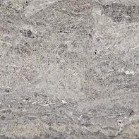 quartzite-platinum-swatch.jpg