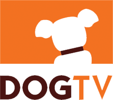 Thank you DogTV for including a G.O.A.T. Pet Speaker with every adoption!
